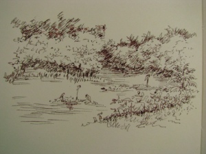 pen sketch showing the 4 egrets at rest