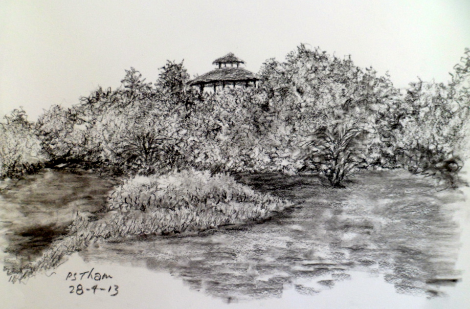 Wetlands in Charcoal